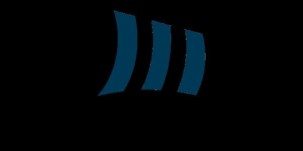 Logo Prins Consulting bleu